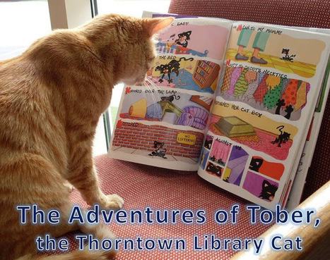 The Adventures of Tober, the Thorntown Library Cat: Cat & Mouse ...   Library Cats   Scoop.it