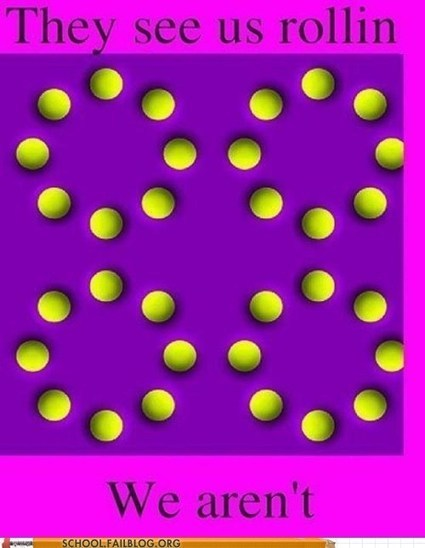 Optical Illusions 101: GOTCHA | The brain and illusions | Scoop.it