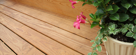 Pressure Treated Lumber Products and Project Plans: Decking, Kiln-Dried, Columns, Fences, Timbers, Posts, Railing, Steps, Lattice & more - YellaWood®   Carpentry 1   Scoop.it