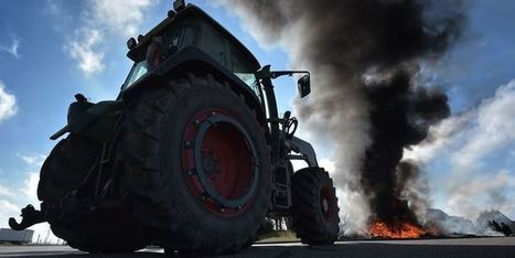 Le désarroi des agriculteurs français au menu du conseil des ministres européens à Bruxelles | la presse AGRIcole | Scoop.it