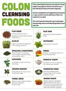 Will Colon Cleansing Heal Your Body? | Detox | Scoop.it