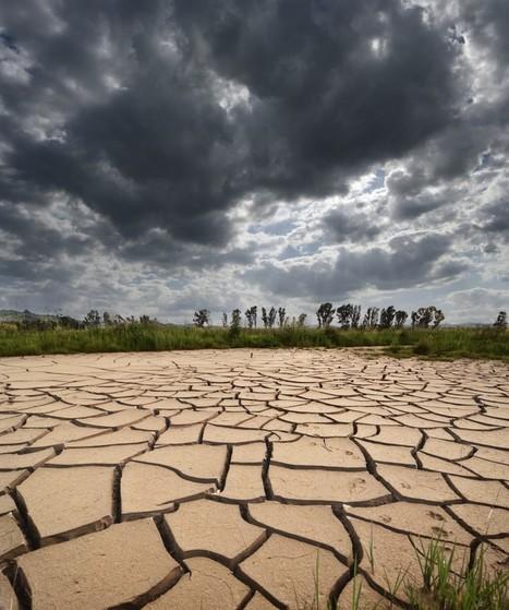 Curso internacional UNAB: Cambio climático y enfermedades ... | Ciencias Naturales | Scoop.it