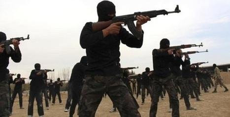 E-learning, djihad et terrorisme : accordances menaçantes | E- learning | Scoop.it