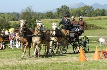 Equitation Rhône Alpes – Comité Régional Equitation – Tout sur la ... | Balades, randonnées, activités de pleine nature | Scoop.it