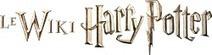 Wiki Harry Potter | Questionnaires dans les bibliothèques | Scoop.it