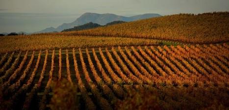 Harvest Summit: An Innovation Field Trip in Sonoma County - Sonoma Magazine   Healdsburg, California Lifestyle   Scoop.it
