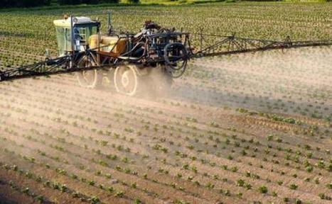 Des résidus de pesticides retrouvés dans les cheveux d'écoliers en milieu agricole   EDD-Robert Schuman   Scoop.it