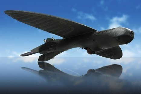 Army Scores a Super-Stealthy Drone That Looks Like a Bird | World - Science & Nature | Scoop.it