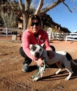 Maine Legislation Would Prevent Tenants From Having Pets | Animals  | Change.org | Animal Welfare | Scoop.it
