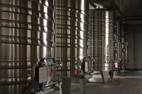 INRA - Conséquences économiques changement climatique sur la consommation des vins | Winemak-in | Scoop.it