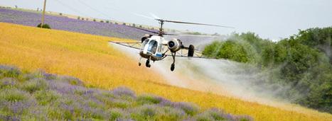 L'interdiction de l'épandage aérien des pesticides, pas franchement pour maintenant | Abeilles, intoxications et informations | Scoop.it