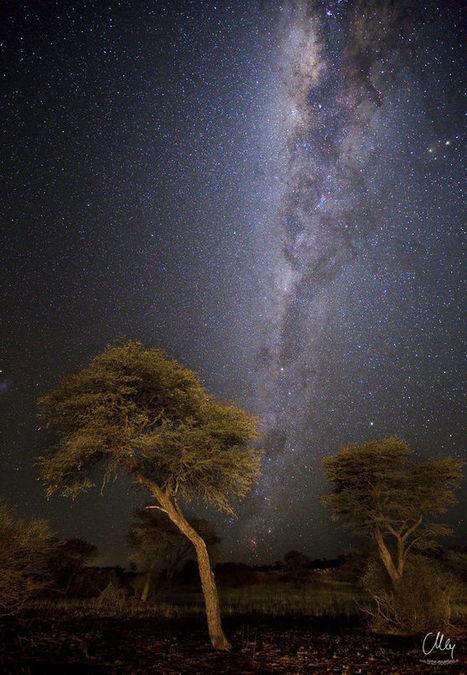 Kalahari Sky byCarsten Meyerdierks | My Photo | Scoop.it