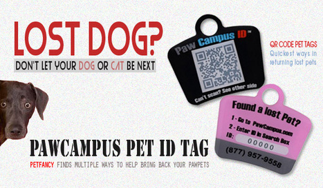 Fastest Way To Find Your Pet | All About Pet Accesories | Scoop.it