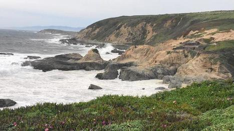 Forget El Niño — California's coast is in danger from a soulless commission | Coastal Restoration | Scoop.it