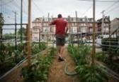 It's Not Urban Farming. It's Community. -- Generocity | Vertical Farm - Food Factory | Scoop.it