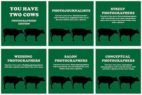 You Have Two Cows: Photographers' Edition | xposing world of Photography & Design | Scoop.it
