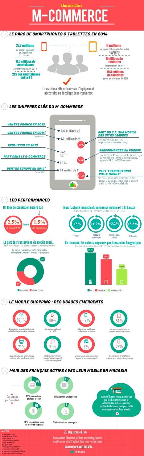 Etat des lieux du «mobile shopping» en France…   Ecommerce' topic   Scoop.it