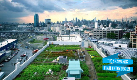 Feed Your City: Architecture + Farming   Vertical farming   VertiFarm©   Scoop.it