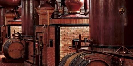 Moët Hennessy excite les soifs de luxe | Epicure : Vins, gastronomie et belles choses | Scoop.it