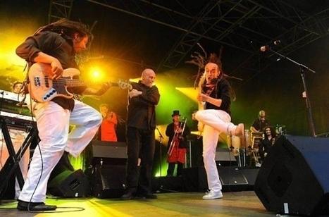 Festival les Terres Blanches : Sinsemilia et Shaka Ponk en têtes d'affiche | Revue de Web par ClC | Scoop.it
