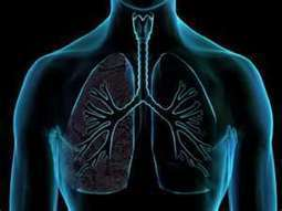 Cigarette Smoking Liked To Interstitial Lung Diseases, IPF   CAROL STANTON   Scoop.it