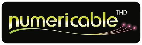 Vers une introduction de Numericable en Bourse ?  #Numericable   Telecom news   Scoop.it