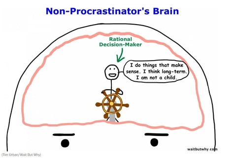 The real reasons you procrastinate – and how to stop | Business Coaching | Scoop.it