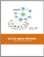 CIO White Paper: The Essentials of a Social Media Strategy | The Youth Years | Scoop.it