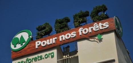 Un affichage écologique qui s'auto-alimente pour promouvoir la gestion durable de la forêt | Ecologie & environnement | Scoop.it