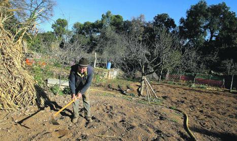 El Ayuntamiento recuperará la Font de les Canyes como espacio natural   Terrassa: economia i societat   Scoop.it