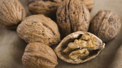 Dordogne : à deux mois de la récolte, les noix demandent de l'eau | Agriculture en Dordogne | Scoop.it
