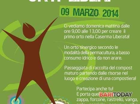 Orti liberi alla ex caserma liberata - Per grandi e piccini - BariToday | About gardening | Scoop.it