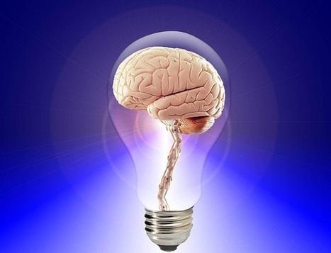 Le neuromarketing : quand la science s'allie au Business - Écrire Pour le Web | Blog WP Inbound Marketing Leads | Scoop.it