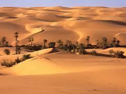 Los desiertos | ecosistemas | Scoop.it
