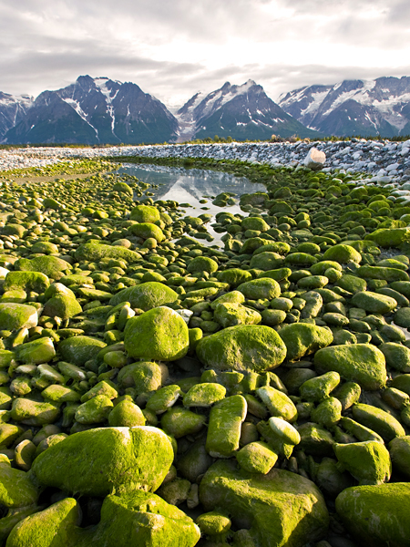 Float the Tatshenshini-Alsek River, Alaska | Life @ Work | Scoop.it