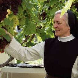 The nuns' story: what life is really like in our only women's monastery - Independent.ie | how to maintain your garden | Scoop.it