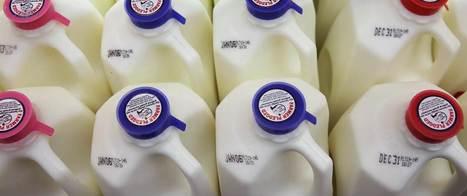 Dairy, Supplements Do Little For Bones, Study Finds | Kickin' Kickers | Scoop.it