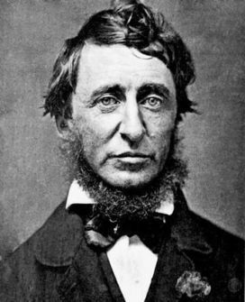 3quarksdaily: Thoreau's Body of Knowledge   History, Science and Miscellaneous - 18   Scoop.it