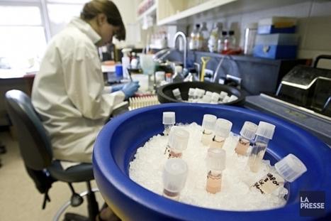 Dépenses en recherche dans les universités: le Québec évite la baisse | Higher Education and academic research | Scoop.it