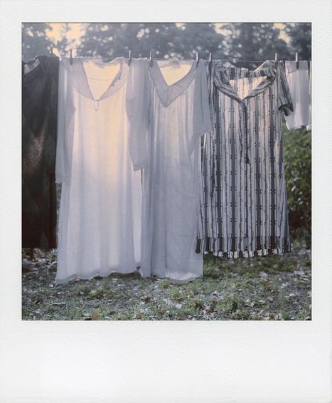 Bruno Seigle Madeleines | Daily ART News | Scoop.it
