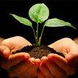 Korecash - Internet Business Helpe | Louise3yb | Scoop.it