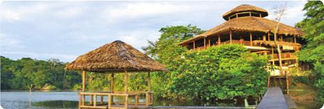 selva   Travel Exotics of the world   Scoop.it