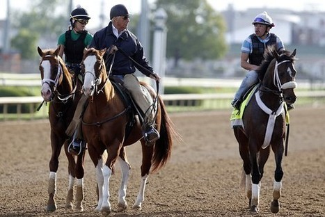 Bringing 'Big Data' to Horse Racing | Big Data & Digital Marketing | Scoop.it