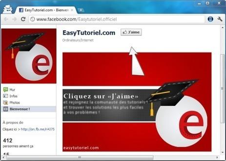 "Comment créer un onglet ""Bienvenue !"" sur sa page Facebook (FBML) ! | Easytutoriel.com | Superkadorseo | Scoop.it"