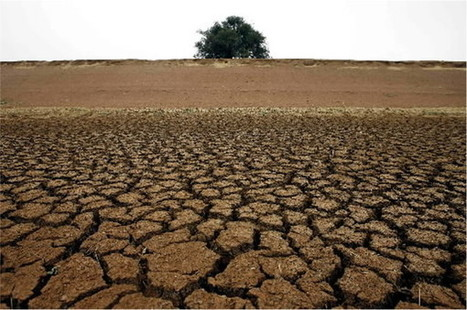 California looks Down Under for drought advice | GMOs & FOOD, WATER & SOIL MATTERS | Scoop.it