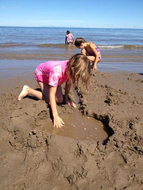 STEM at the beach could be oh so simple | Teacher Leadership Weekly | Scoop.it