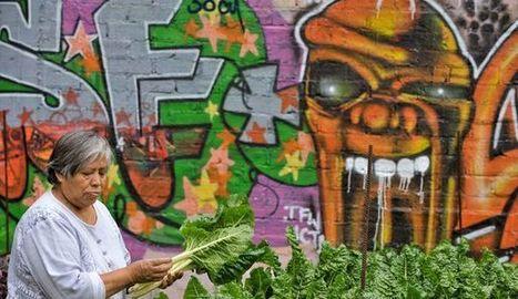 Agriculture urbaine: nourrir les villes, guérir les urbains | Agriculture urbaine, architecture et urbanisme durable | Scoop.it