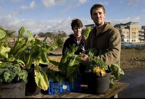 A more eco-friendly way of life - Telegraph.co.uk | Nature conservation | Scoop.it