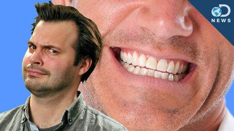 DNews: Can You Spot a Fake Smile? : DNews | Social Neuroscience Advances | Scoop.it