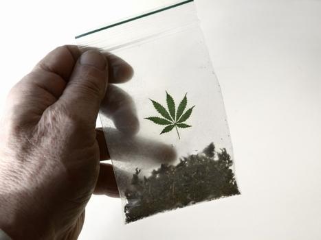 Kwetsbare Goese jongeren in criminaliteit door softdrugsbeleid | Drugsbeleid | Scoop.it